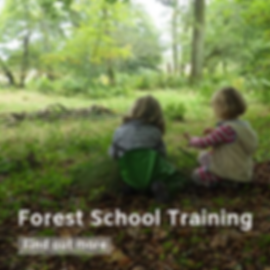 Forest School Training (5).png