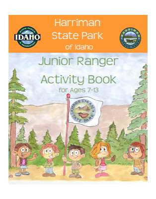 Jr. Ranger Program badges and books.