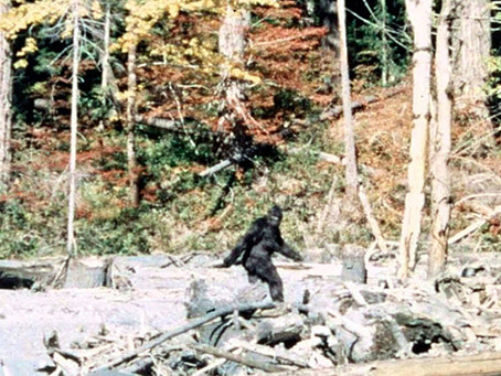 Bigfoot Sighting in Estes Park Colorado