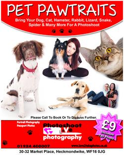 Pet Pawtrait Offer