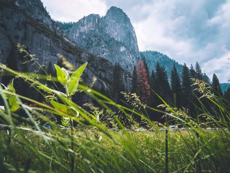 Yosemite National Park Album Vol.1