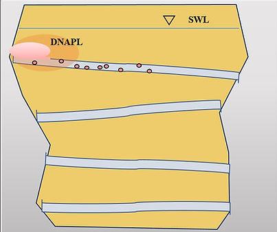 Fractured Bedrock NAPL