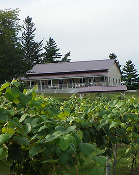 fox-ridge-winery.jpg