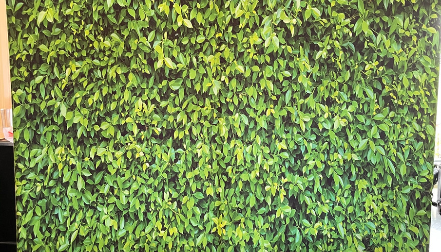 Green Hedge