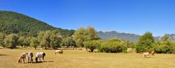 Parco Nazionale d'Abruzzo - Italy