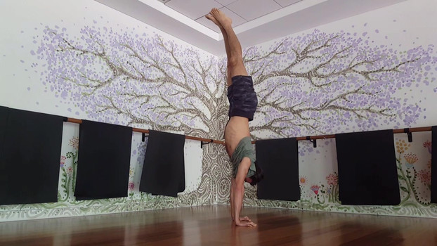 Handstand practice at Flow Athletic