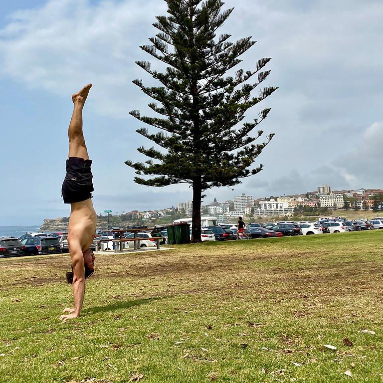 Monthly Handstand Workshop - April 19th
