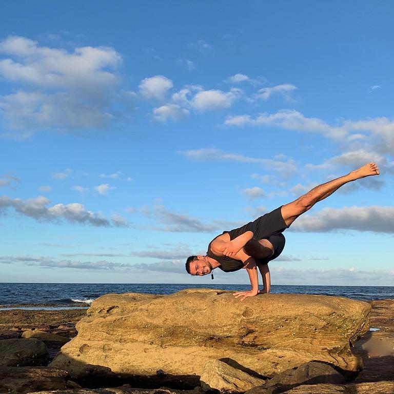Advanced Arm Balances: A Peak Pose Sequence Workshop