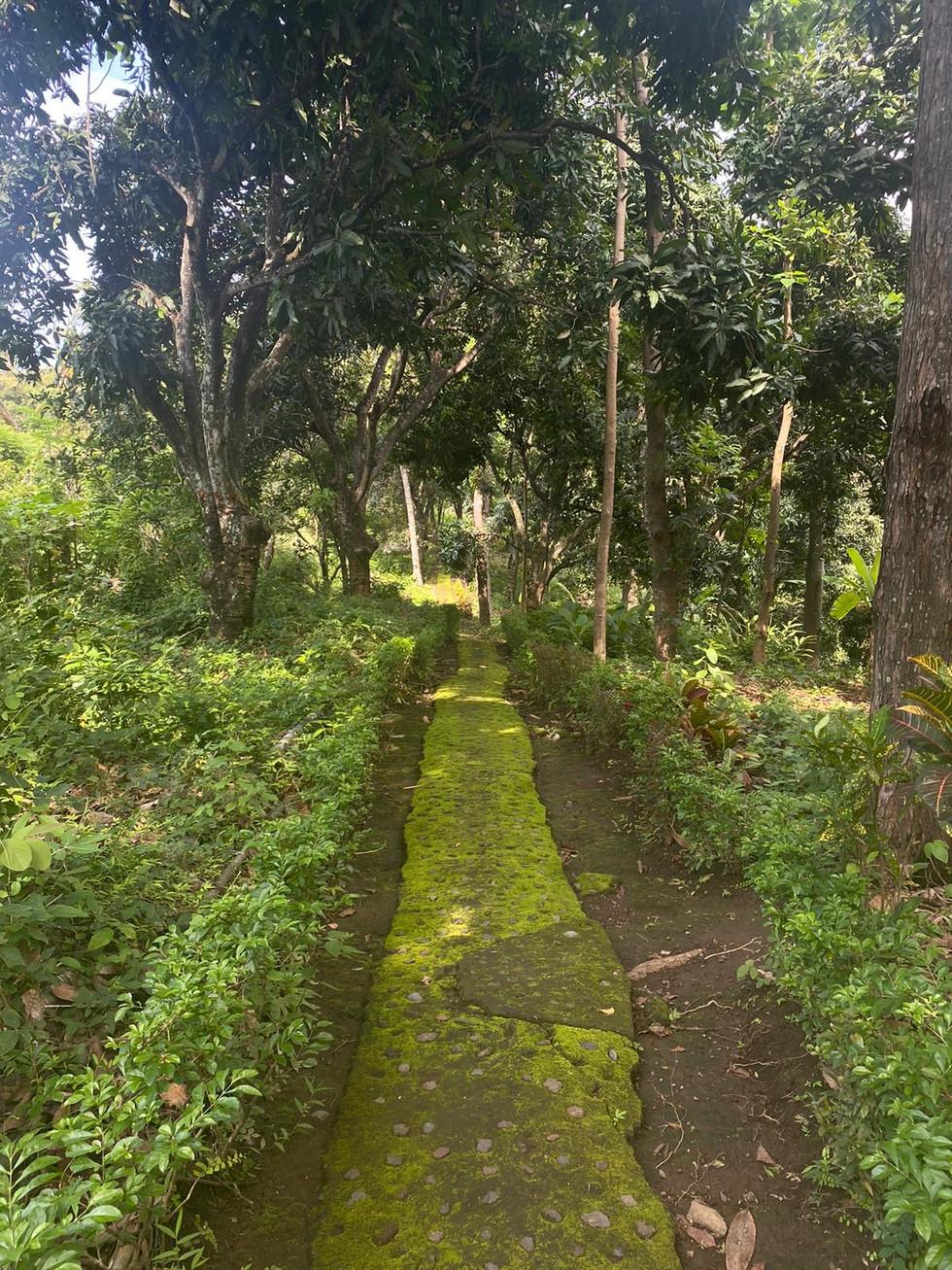 Retreat Pathway