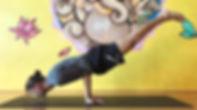 Joao da Costa Yoga - mayurasana - Peacoc