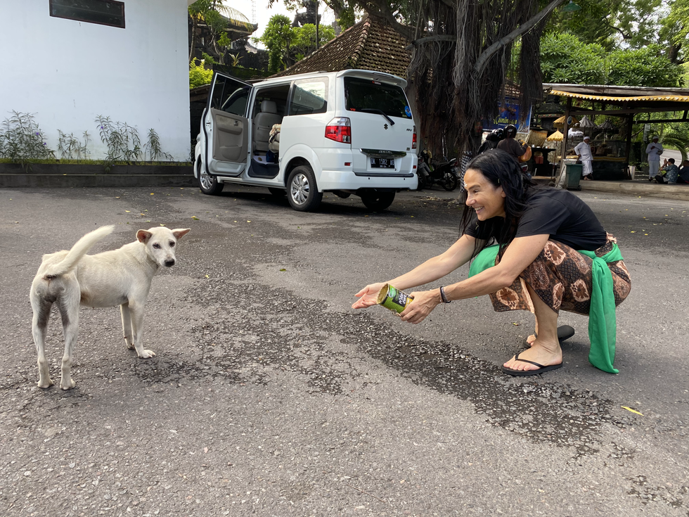 Nadine Feeding the Animals