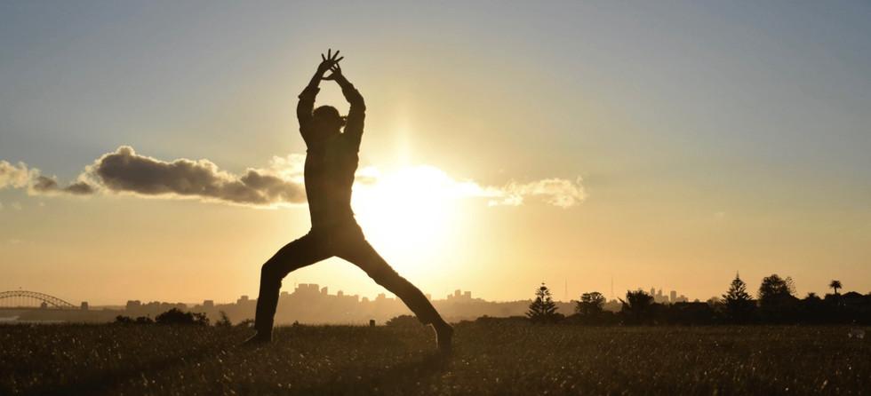 Joao da Costa Yoga - Transition