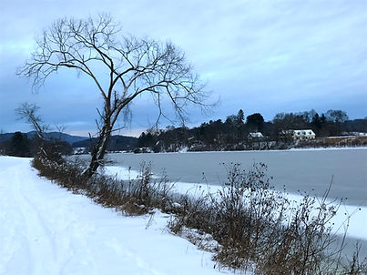 Winter Image, Donna Steinberg Clinical Psychologist Hanover, NH