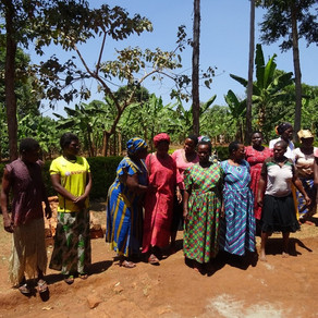 MEDCO Mount Elgon Community Development Organisation - Manafwa
