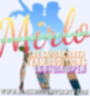Mirlo Flyer Salsa.jpg