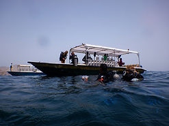 Scuba diving off West Maui