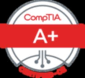 CSA+ce certified logo color.jpg