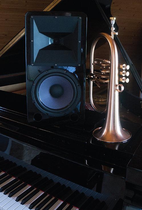 M8 - Studio Monitor
