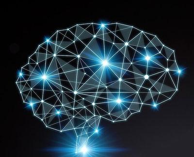Neuro 7.jpg
