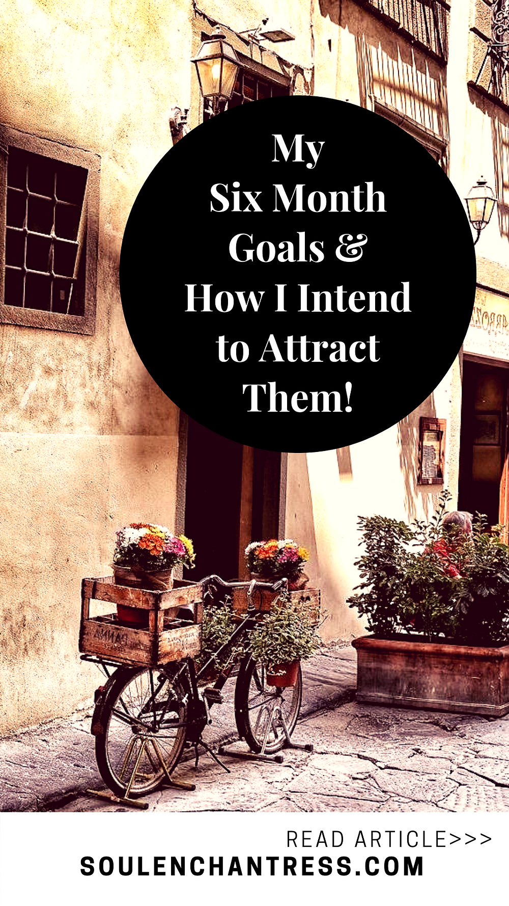 how to set goals, how to achieve goals, my six month goals and how I intend to achieve them, soul enchantress, attract love, attract money, how to attract your desires, paris, florence, jimmy choo, laboutin