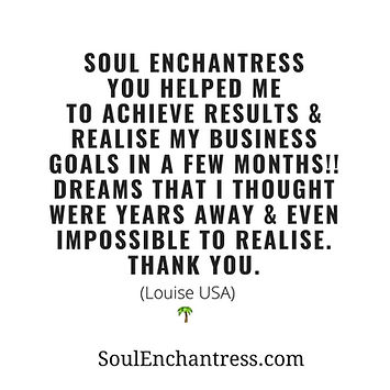 soul enchantress, business success strategies for introver