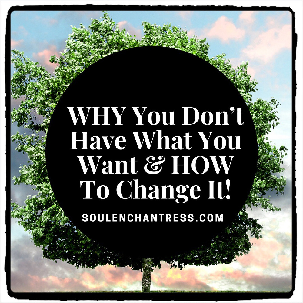 why you don't have what you want, how to manifest fast, soul enchantress, manifestation mentor