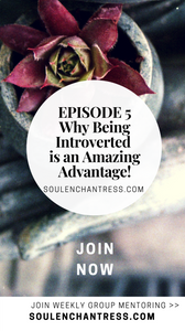 introvert problems, introvert struggles, introvert, soul enchantress