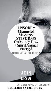 steve jobs, steve jobs on making money, steve jobs channeled message, soul enchantress, animal spirit
