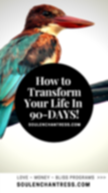how to make life easier, how to make life more fulfilling, how to make life more exciting, soul enchantress, Manifestation Mentor, how to clear money blocks, how to attract more money, how to live a blissful life, introvert entrepreneur, business mentor