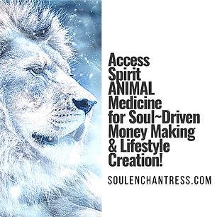 spirit animal medicine, soul enchantress