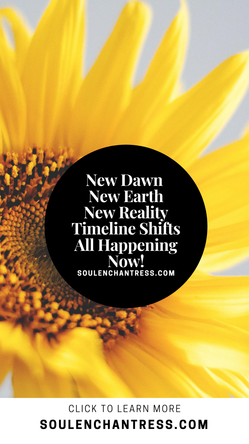soul enchantress, new earth, new world, new reality, timeline shifts