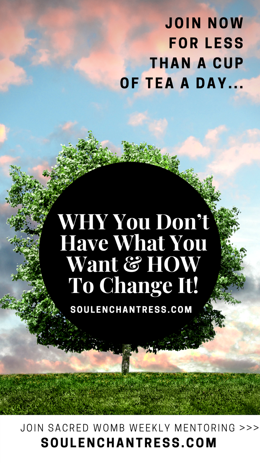how to manifest what you want, why you dont have what you want, how to manifest fast and easily, manifestation mentor, soul enchantress