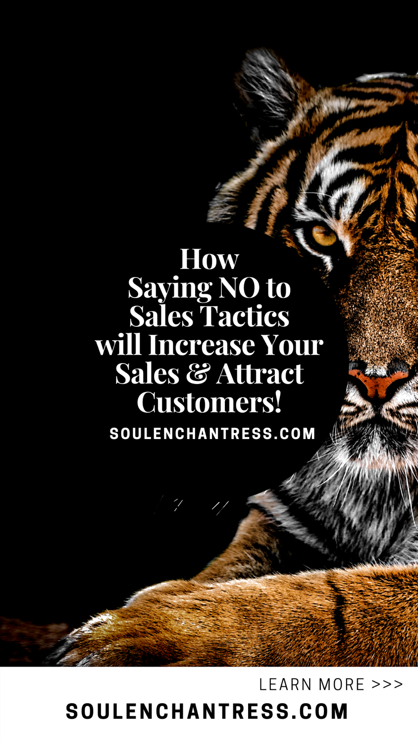 sales psychology, sales tactics, sales strategy, how to increase sales and attract customers, soulenchantress