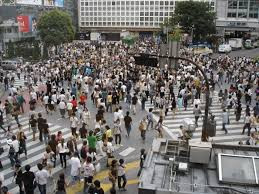 There is Growth in Japan, If You Know Where to Look