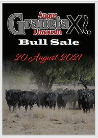 Bull sale catalogue image.png