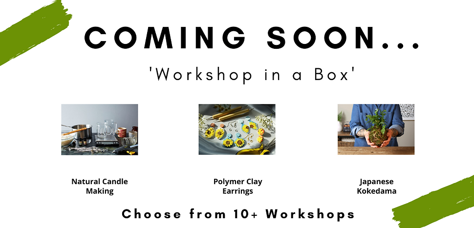 Workshop in a Box (7).png