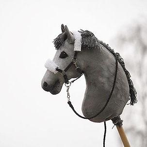Sää yhtä harmaa kuin hevonen__Tulossa my