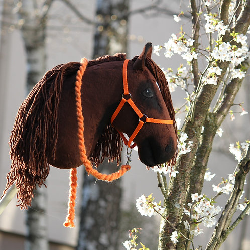 Suomenhevonen, oranssi riimu