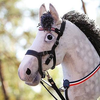 Mulla oli aikaa keskittyä omiin hevosiin