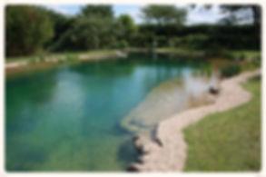 строительство прудов для купания