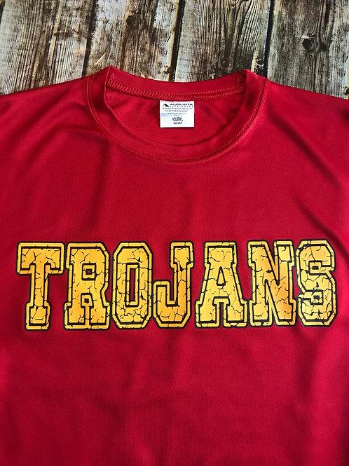 Cracked Trojans