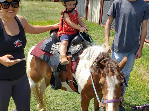 Equine Education & Pony Rides for Midland/Odessa Kids & Families