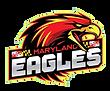 eagles 2020 logo.png
