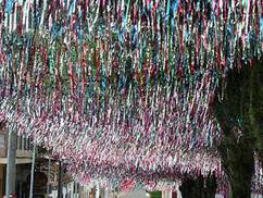 decoracao de carnaval sn (31).jpg