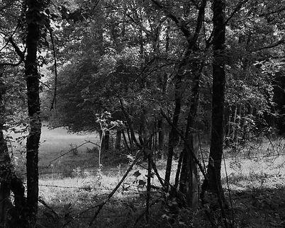 The Bouriane paths - 34