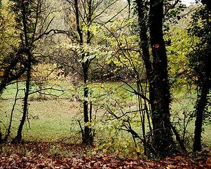 Autumn in Quercy