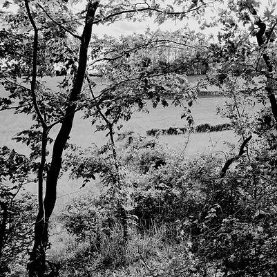 Quercy landscapes #6