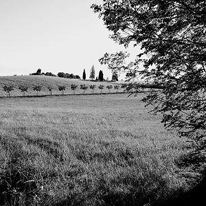 Causses de Quercy