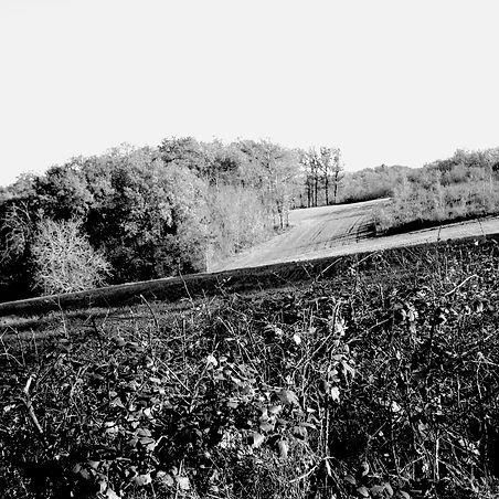 Quercy landscapes #17