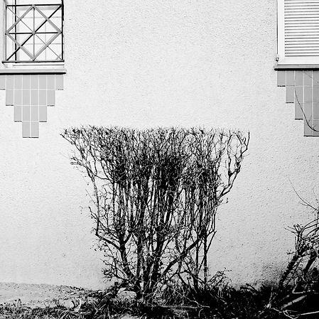 Urbanitées -2